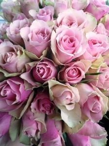 Ruusuja